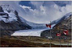 Icefields Parkway -2