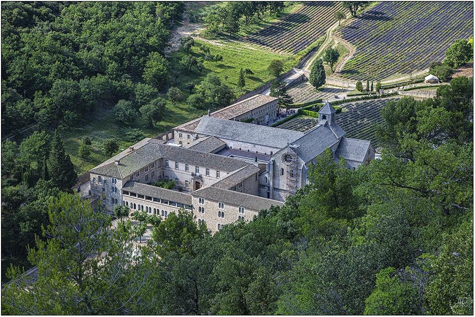 Abbey-de-Senanque